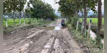 Habitantes de la vereda Palmarosa en Venadillo se quejan de deterioro vial - El Nuevo Dia (Colombia)