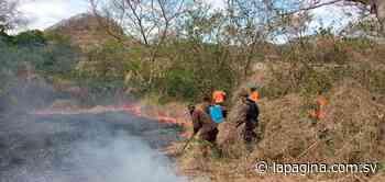 Fuerte incendio en Pasaquina deja al menos 165 hectáreas de terreno consumidas - Diario La Página