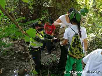 Comunidad de Aipe comprometida con el preservación del medio ambiente y la seguridad - Diario del Huila