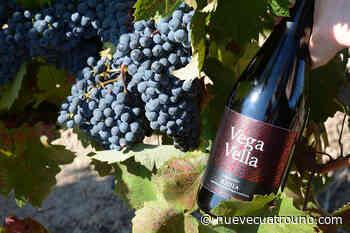 El Rioja La Pedrera alumbra su vino más exigente: Vega Vella Graciano La bodega familiar Cornelio - NueveCuatroUno
