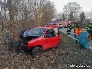 Lensahn: 60-jähriger Autofahrer stirbt bei Unfall - Dennis Angenendt