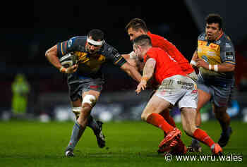 Shingler makes welcome Scarlets return in Munster - Welsh Rugby Union
