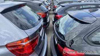 KI hilft bei Fahrzeugbewertung - Autohaus