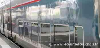 Oissel. Une femme se jette sous un train, les lignes Paris - Le Havre perturbées - Le Courrier Cauchois