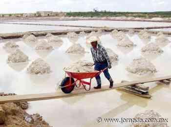 Minera de Canadá va por vetas de litio en Zacatecas y SLP - La Jornada