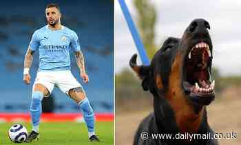 Manchester City ace Walker 'pays £40,000 for guard dog' after raids on footballers' homes