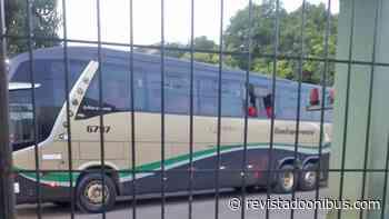 PA: Marginais são mortos dentro de ônibus em Abaetetuba ao tentar assaltar passageiros - REVISTA DO ÔNIBUS