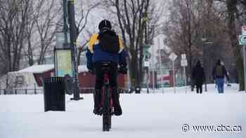 Part of Lachine Canal bike path to be cleared for cyclists this winter - CBC.ca