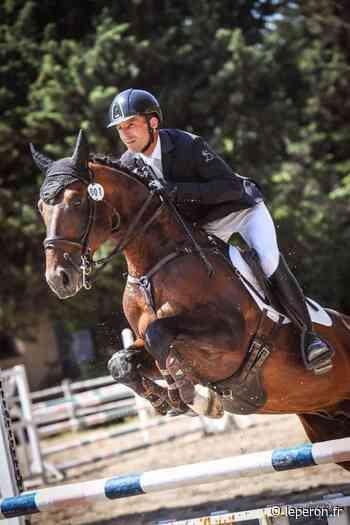 Les jeunes chevaux d'Olivier Chapuis en grande forme à Vedene / Valorisation + 4 ans / élevage / Accueil - leperon.fr - L'EPERON