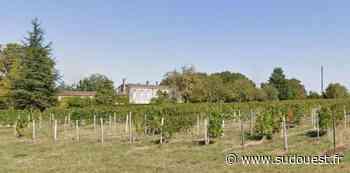 Vins de Bordeaux : en Blayais, la ville de Cavignac acquiert le Château Marinier à Cézac - Sud Ouest