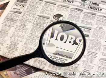 Unemployment dips in Alberta, rises slightly in Saskatchewan - My Lloydminster Now