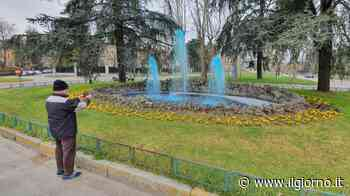 Cusano, la fontana di Milanino colorata di blu scatena curiosità e sospetti - IL GIORNO
