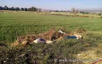 Localizan en Abasolo, Guanajuato 4 cuerpos ejecutados - La Prensa