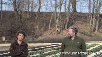 An der Landlmühle in Stephanskirchen werden die ersten Felder der Solawi Landlmühle eG bepflanzt - innsalzach24.de