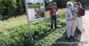 Thalmassing warnt Wildparker - Landkreis Regensburg - Nachrichten - Mittelbayerische - Mittelbayerische