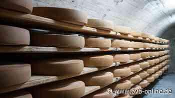 Soyen: Käserei aus Landkreis Rosenheim ruft mehrere Käsesorten zurück - ovb-online.de