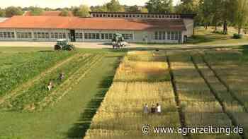 Bachelorstudiengang: Triesdorf bietet Agribusiness - agrarzeitung online