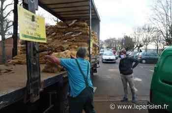 À Limay, Maurepas ou Fontenay-le-Fleury, profitez des patates à prix cassés - Le Parisien
