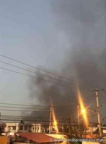 Se extiende gran incendio al oriente de Merida; cierran carretera a Tixkokob - Yucatán a la mano