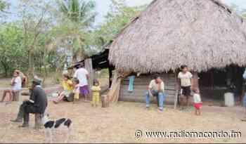 Puerto Gaitán, Meta Alertan por inminente desalojo de comunidad del pueblo Sikuani - Noticias Nacionales - Radiomacondo - Radio Macondo