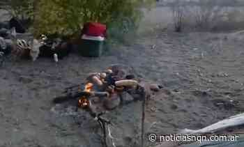 Seis jóvenes de San Martin de los Andes hicieron fuego en un lugar prohibido y pusieron en peligro el bosque - Noticias NQN