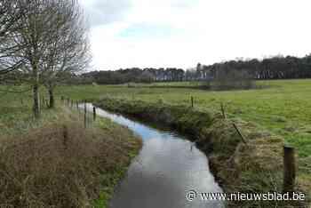 Landbouwsector helpt mee voor betere waterkwaliteit rivier 't Merkske