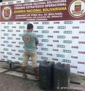 Transportaba gasolina ilegalmente en Caicara del Orinoco - Diario Primicia - primicia.com.ve