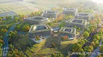 Vorarbeiten für Schwarz-Campus in Bad Friedrichshall stehen weiter still - STIMME.de - Heilbronner Stimme