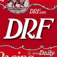 Trainer Englehart begins 10-day suspension - Daily Racing Form