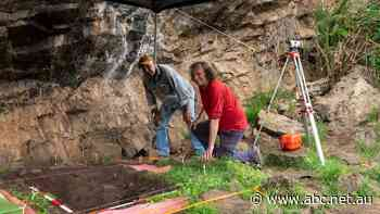 Cave discovery 'opens our eyes' to ancient food practices