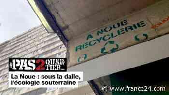 Pas 2 Quartier - 93 - La Noue : sous la dalle, l'écologie souterraine - FRANCE 24