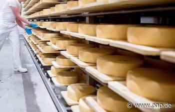 Oberbayerische Käserei ruft mehrere Käsesorten zurück - Soyen - Passauer Neue Presse