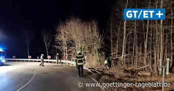 Unfall im Groner Holz zwischen Göttingen und Dransfeld - Göttinger Tageblatt