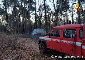 Fiamme a Sesto Calende nei boschi di Lentate, vigili del fuoco sul posto - varesenews.it
