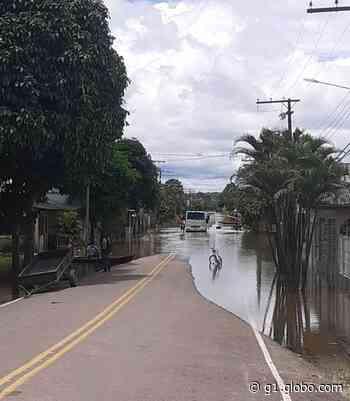 Após transbordar pela segunda vez, Rio Tarauacá começa a apresentar vazante - G1