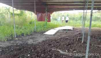 Empresario que denunció robo de gallinas en Repelón advierte de amenazas - Caracol Radio