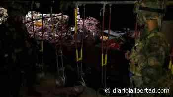 Ejército destruye en Unguía, Chocó, un laboratorio del Clan del Golfo para procesar pasta base de coca - Diario La Libertad