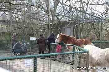 Endlich wieder Streicheleinheiten für die Tiere im Leintalzoo in Schwaigern - STIMME.de - Heilbronner Stimme