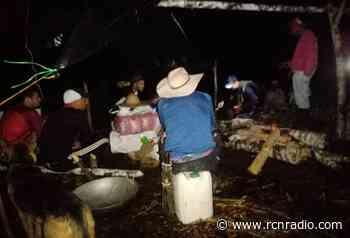Protesta de campesinos por erradicación de cultivos en Anorí, Antioquia - RCN Radio