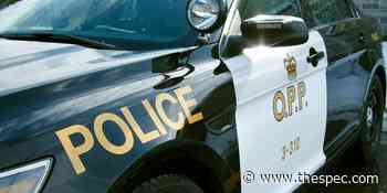 Woman, 27, dies after Hagersville crash; driver facing charges - TheSpec.com