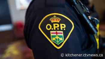 Woman dies following crash in Hagersville: OPP - CTV Toronto