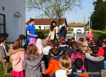 Le Haillan (33) : les écoliers sont invités à en prendre de la graine - Sud Ouest