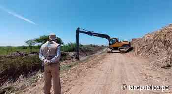 Lambayeque: realizan trabajos de descolmatación de drenes en Monsefú LRND - LaRepública.pe