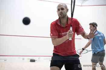Squash-Profi aus Hirzel spielt in Kairo – «Das Problem mit der langen Pause haben alle» - Zürichsee-Zeitung