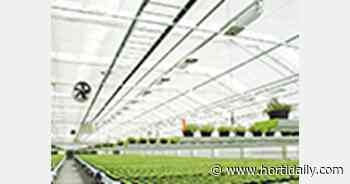 Russia: construction of 32 ha greenhouse complex restarted in Voronezh - hortidaily.com