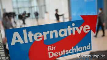 Landtagswahl Fichtenberg Oberrot: Die AfD bleibt im Rottal die drittstärkste Kraft - SWP