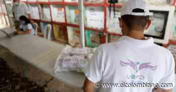 JEP continuará búsqueda de desaparecidos en cementerio de Puerto Berrío - El Colombiano