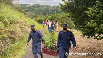 Soldados lideraron jornada de reforestación en vereda de Baraya - Huila