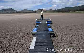 En fotos: la sequía que está acabando con la laguna de Suesca - El Espectador