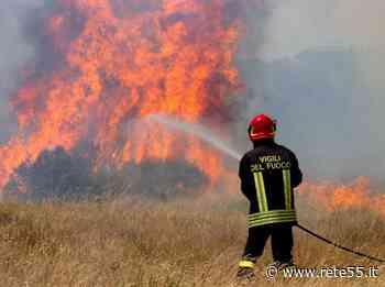 Sesto Calende, incendio nei boschi - Rete55